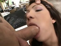 roccos youthful anal adventurers
